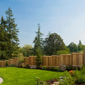 backyard with leveled wooden fence