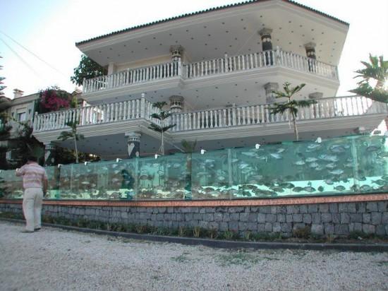 fish tank fence