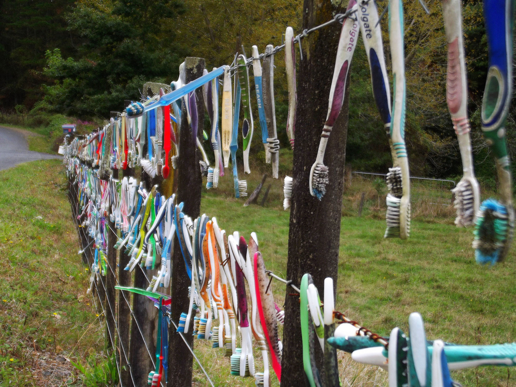 rural toothbrush fence