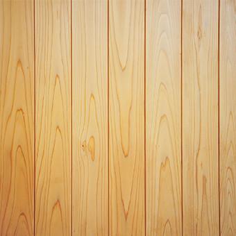 Pressure treated pine wood fence